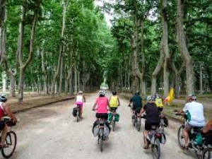 Biciviaggi Fiab: destinazioni in Italia ed Europa per scoprire le migliori esperienze bike friendly
